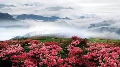 大熊山风景区